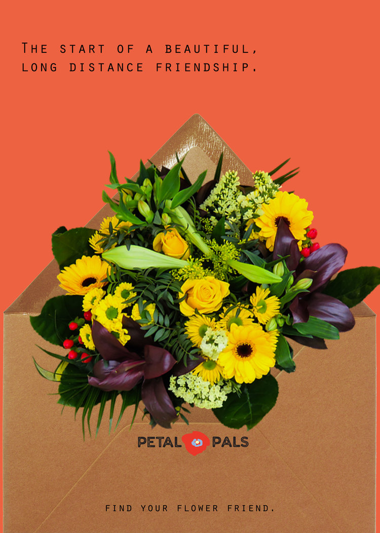 petal-pals-print-3.jpg