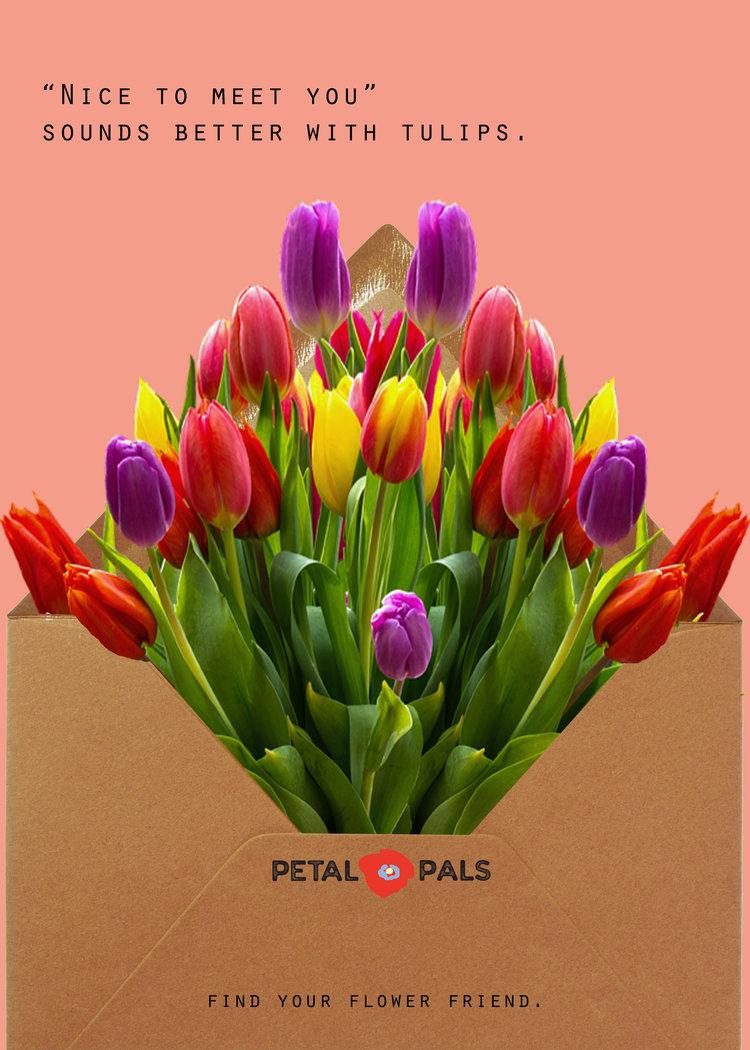 petal-pals-print-2.jpg