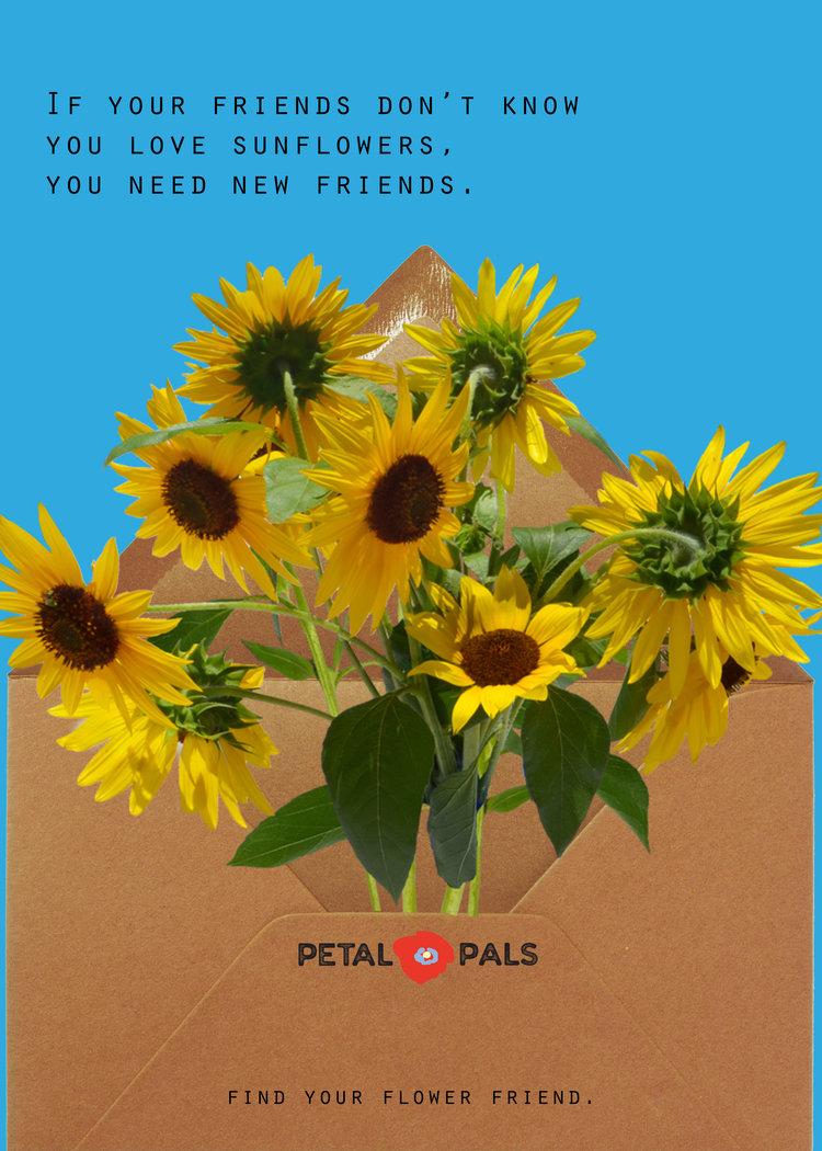 petal-pals-print-4.jpg