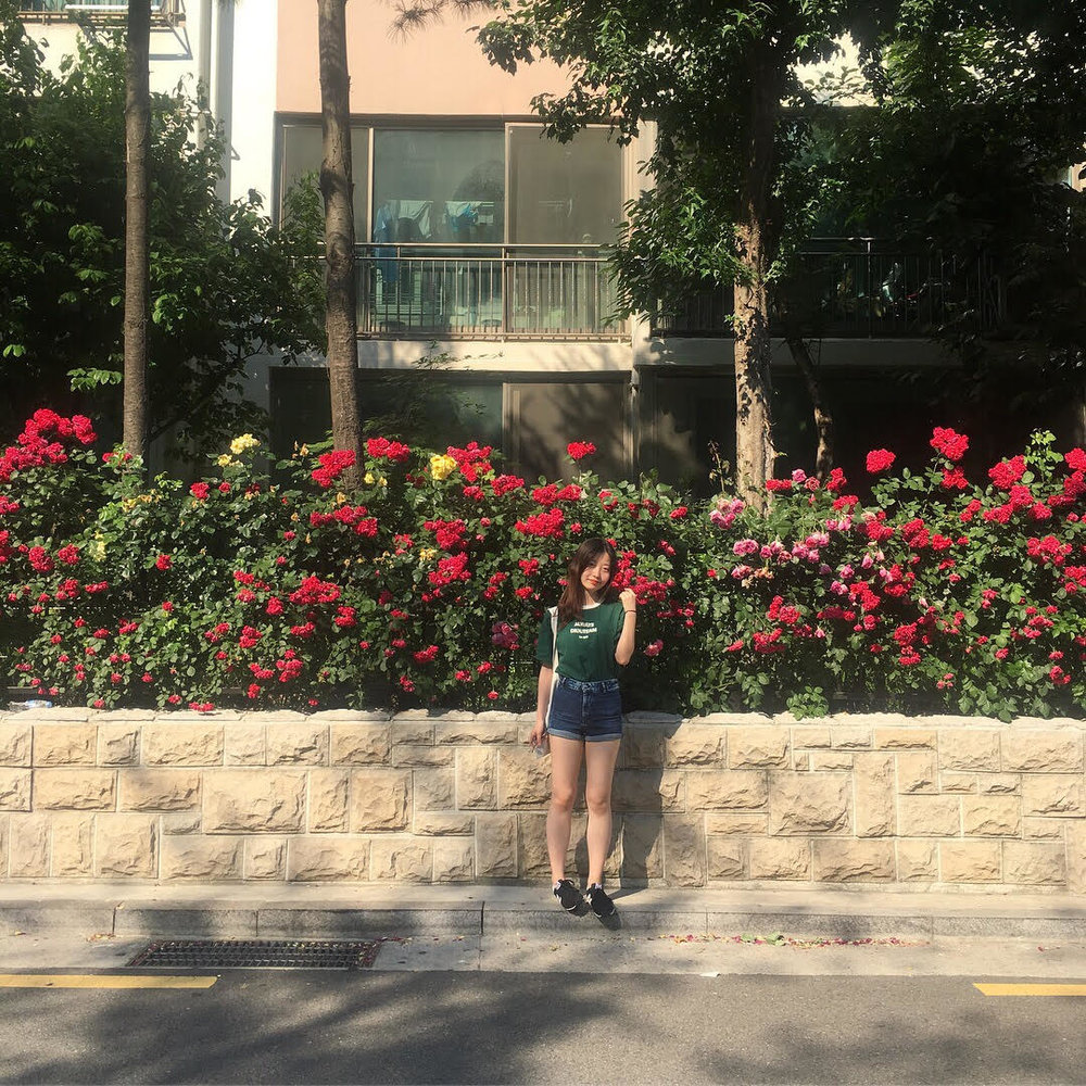 Yingke - My name is Yingke Yang and I am currently studying in the Mount Holyoke College in the United States. I'm a rising junior student major in East Asian studies.