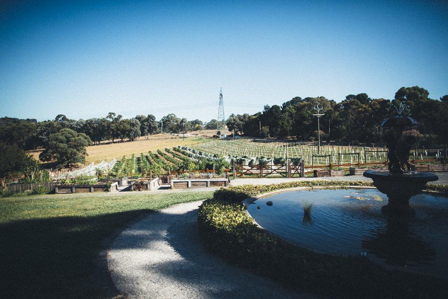 MelbourneWedding-TheFarm-AshleyBlake-289