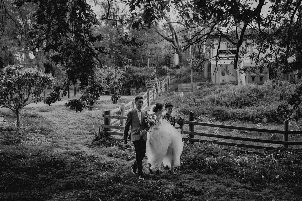 Melbourne_Wedding_Collingwood_Childrens_Farm_Anna_Taylor_046.jpg