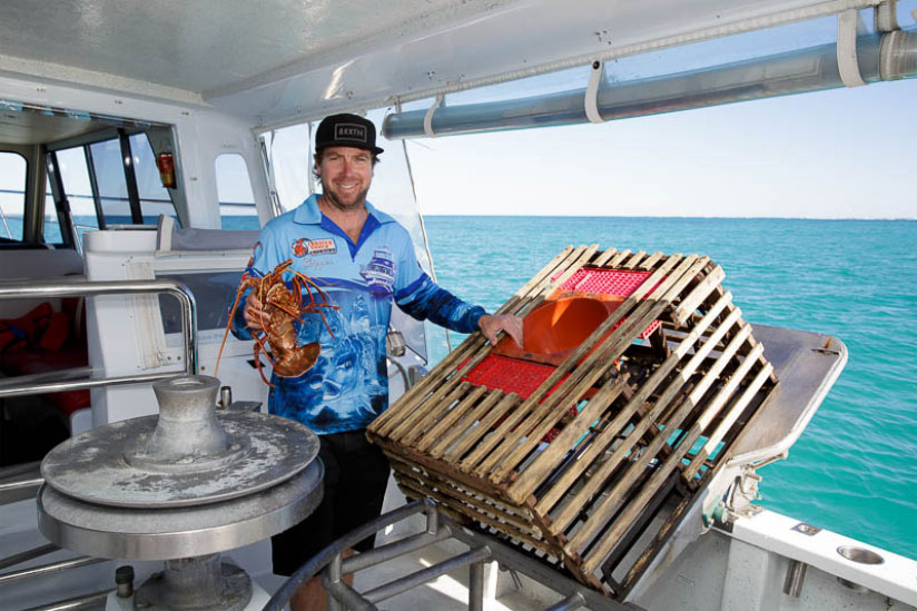 Lobster shack.jpg