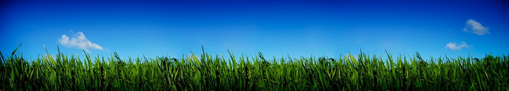 Green-Grass-and-Blue-Sky-2-000001717094_Small.jpg