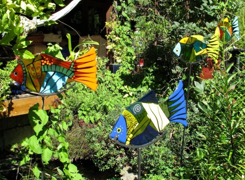 School of  my fused glass colourful garden fish, already living in Honey Bear's new home.
