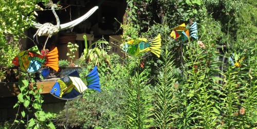 Another shot of the fused glass garden fish. Gorgeous garden for them.