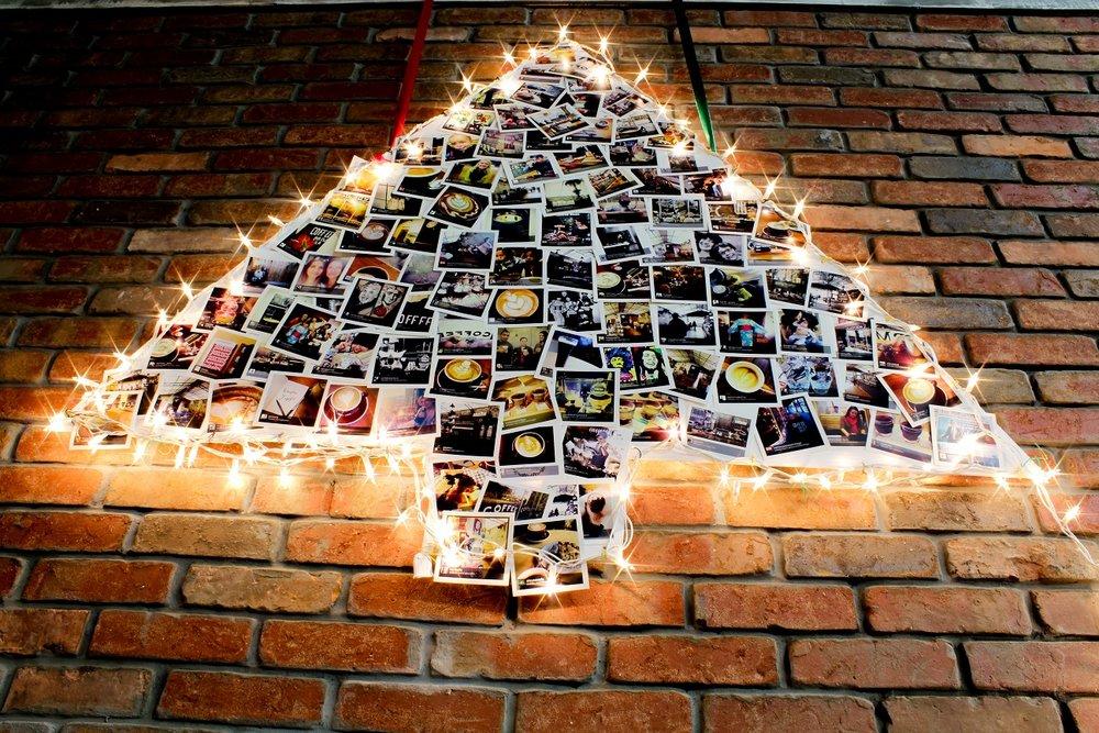 Tree-smallr.jpg