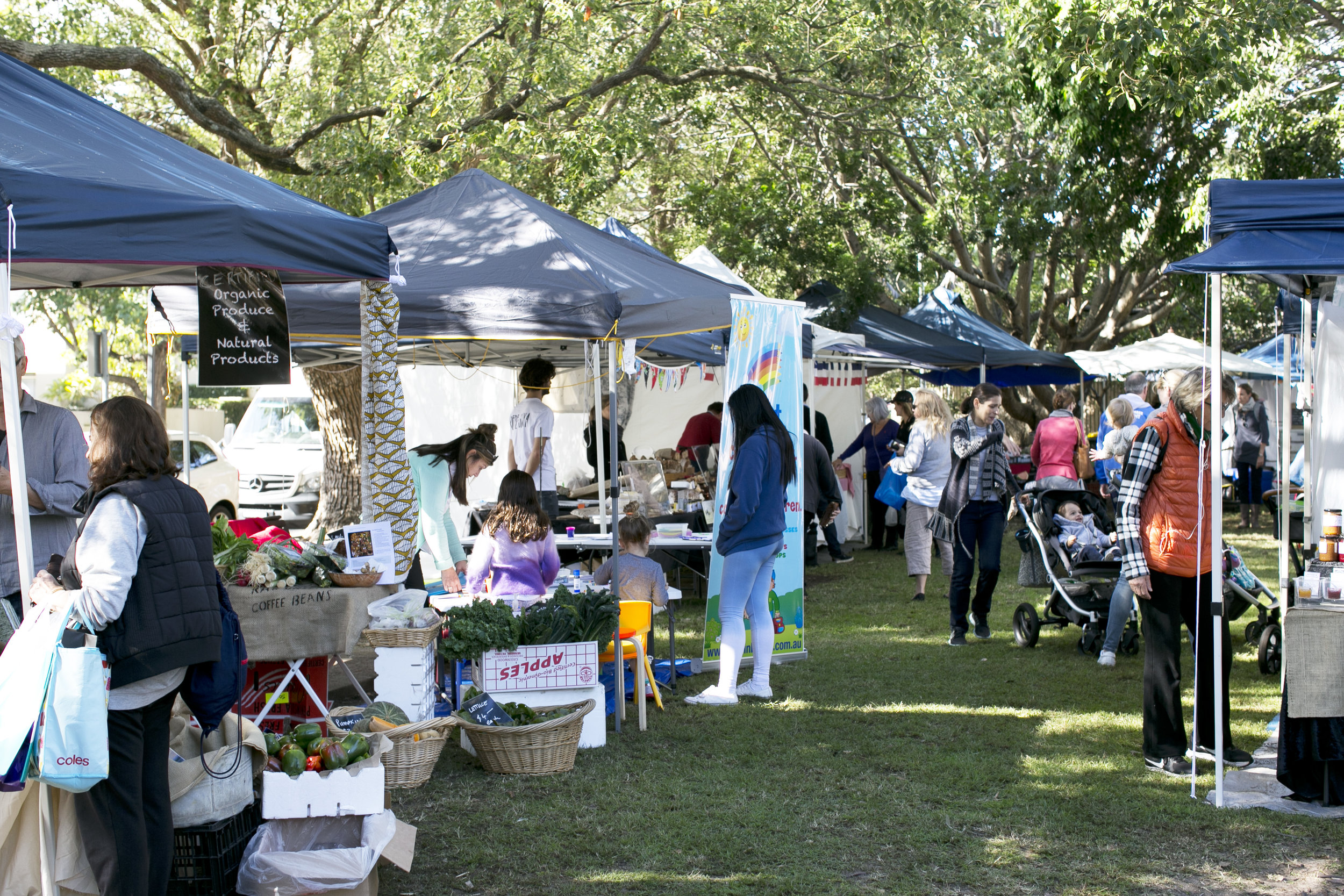 rose bay farmers market every tuesday in pannerong reserve rose bay