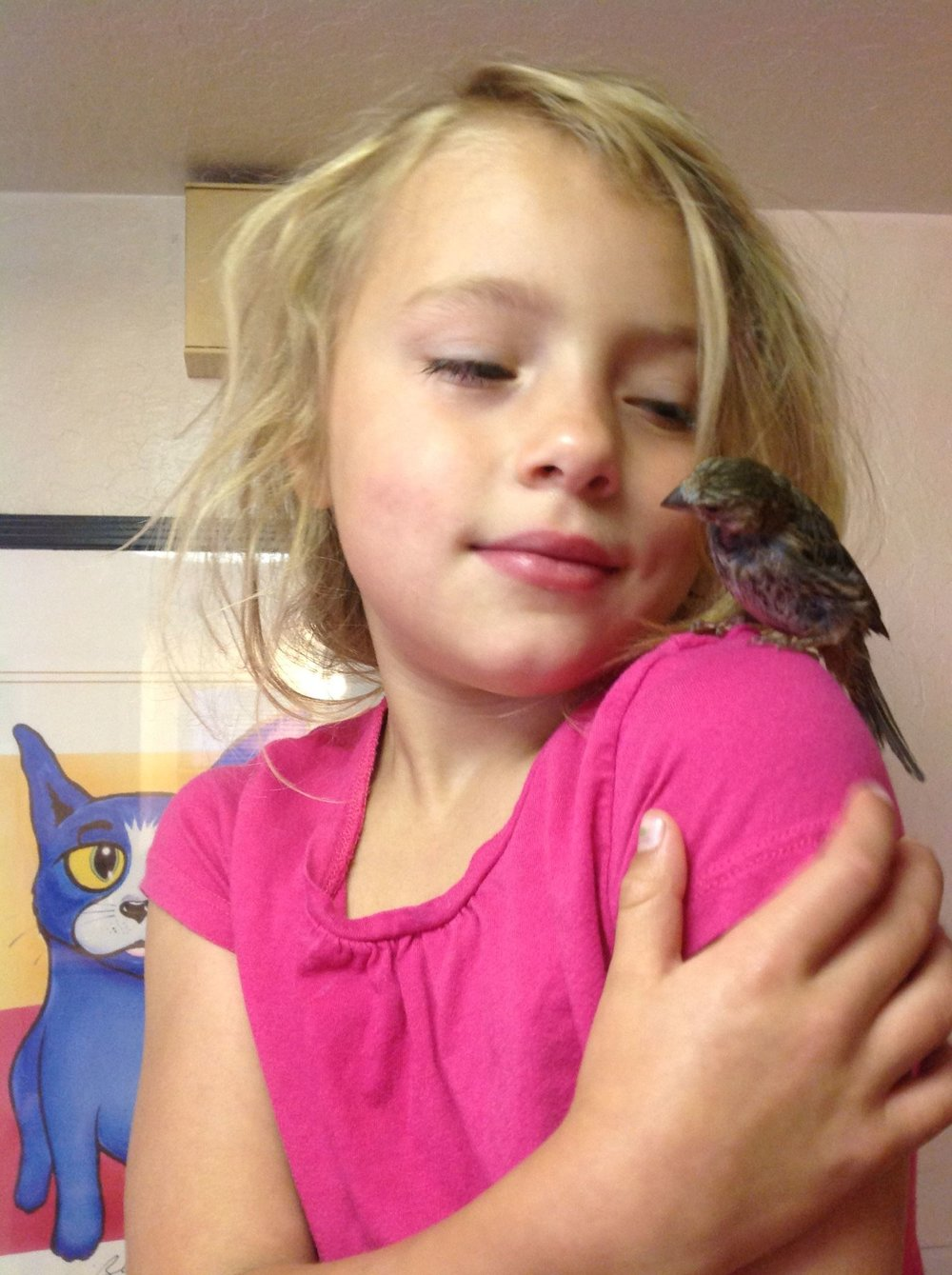 Our sparrow, Beaky