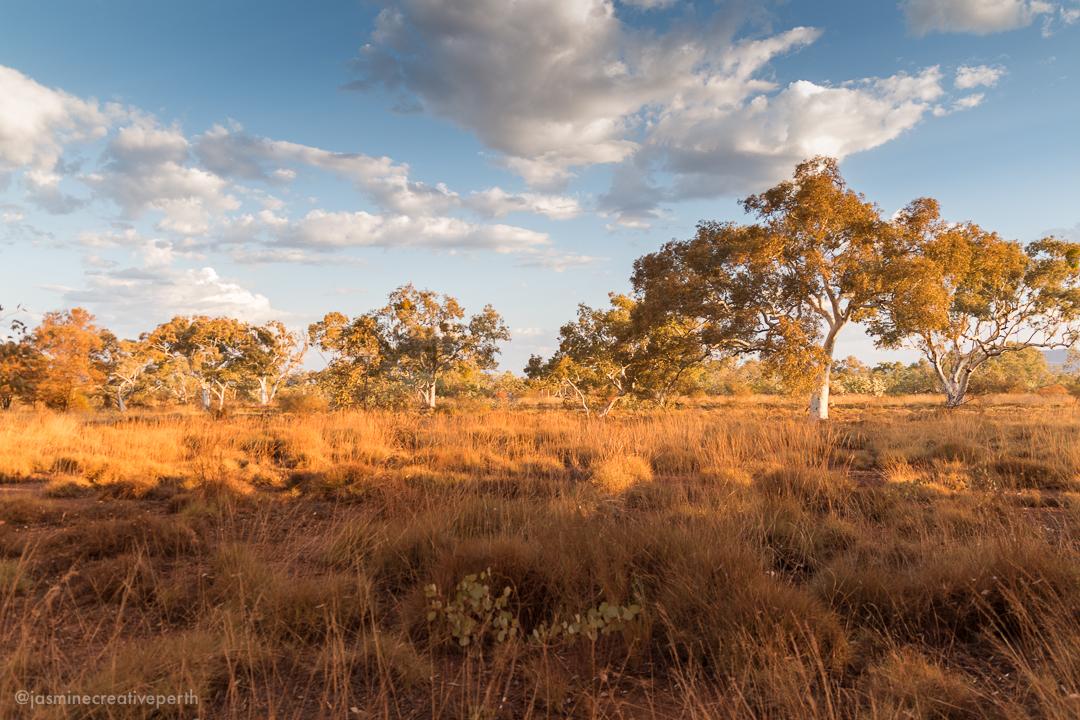 gepl gumala karijini eco retreat tourism photography australia (12 of 48).jpg