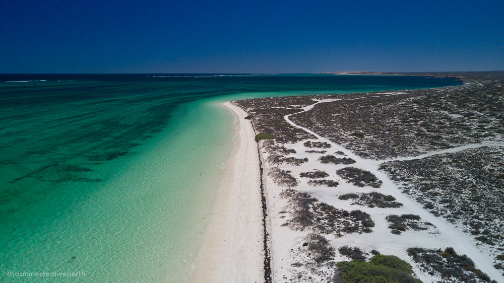 waroora station ningaloo coral bay beach ocean aerial landscape photography jasmine creative body perth (3 of 4).jpg