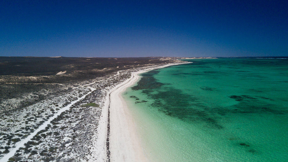 waroora station ningaloo coral bay beach ocean aerial landscape photography jasmine creative body perth (4 of 4).jpg