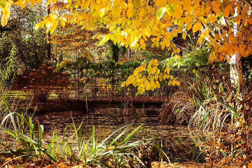 Bluebell Arboretum, Smisby