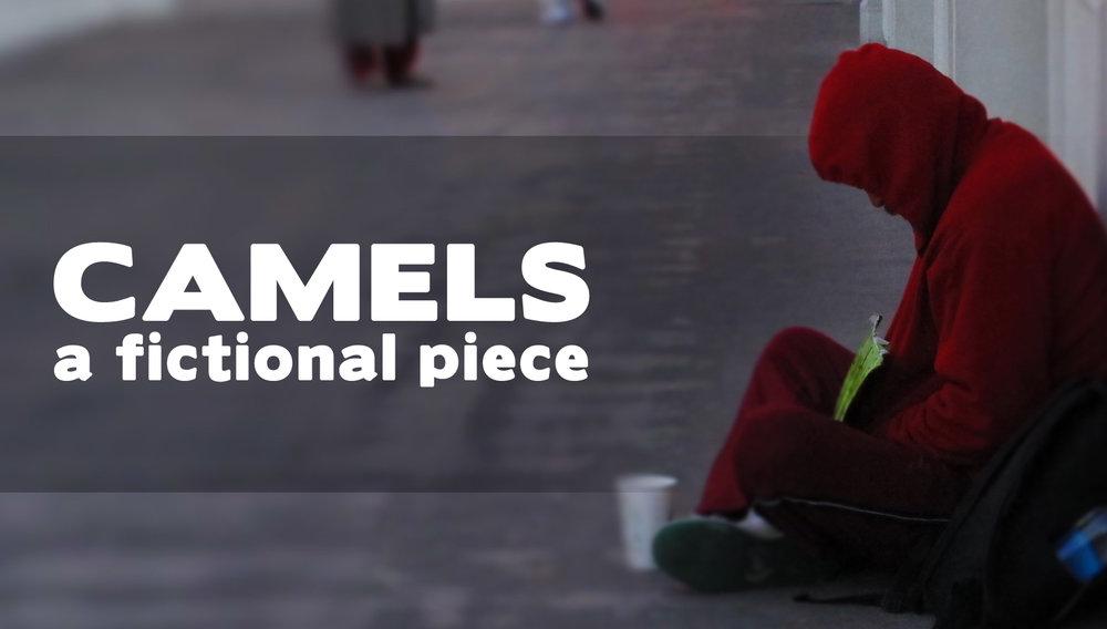 Camels22028229.jpg