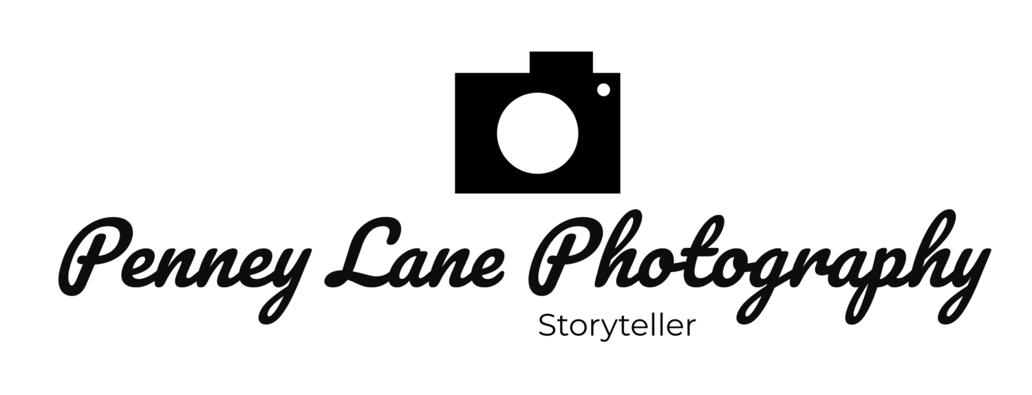 Penney Lane Photography |Northwest Arkansas | Southern Missouri | Northeast Oklahoma