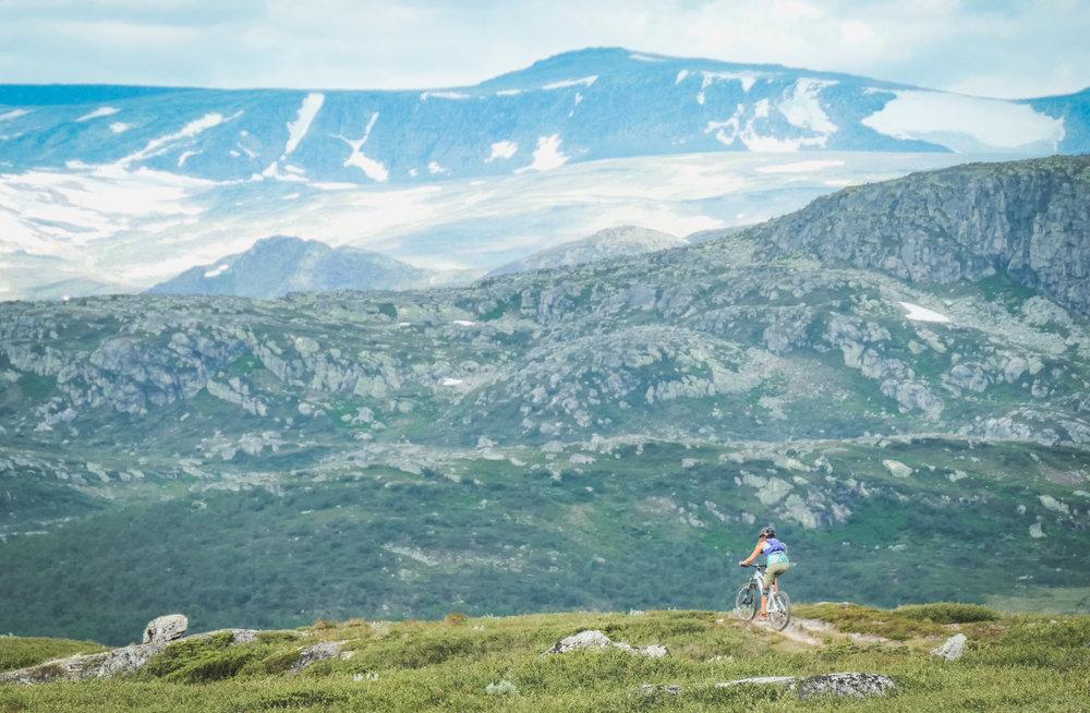 På stien mellom Melbyfjellet og Knausene