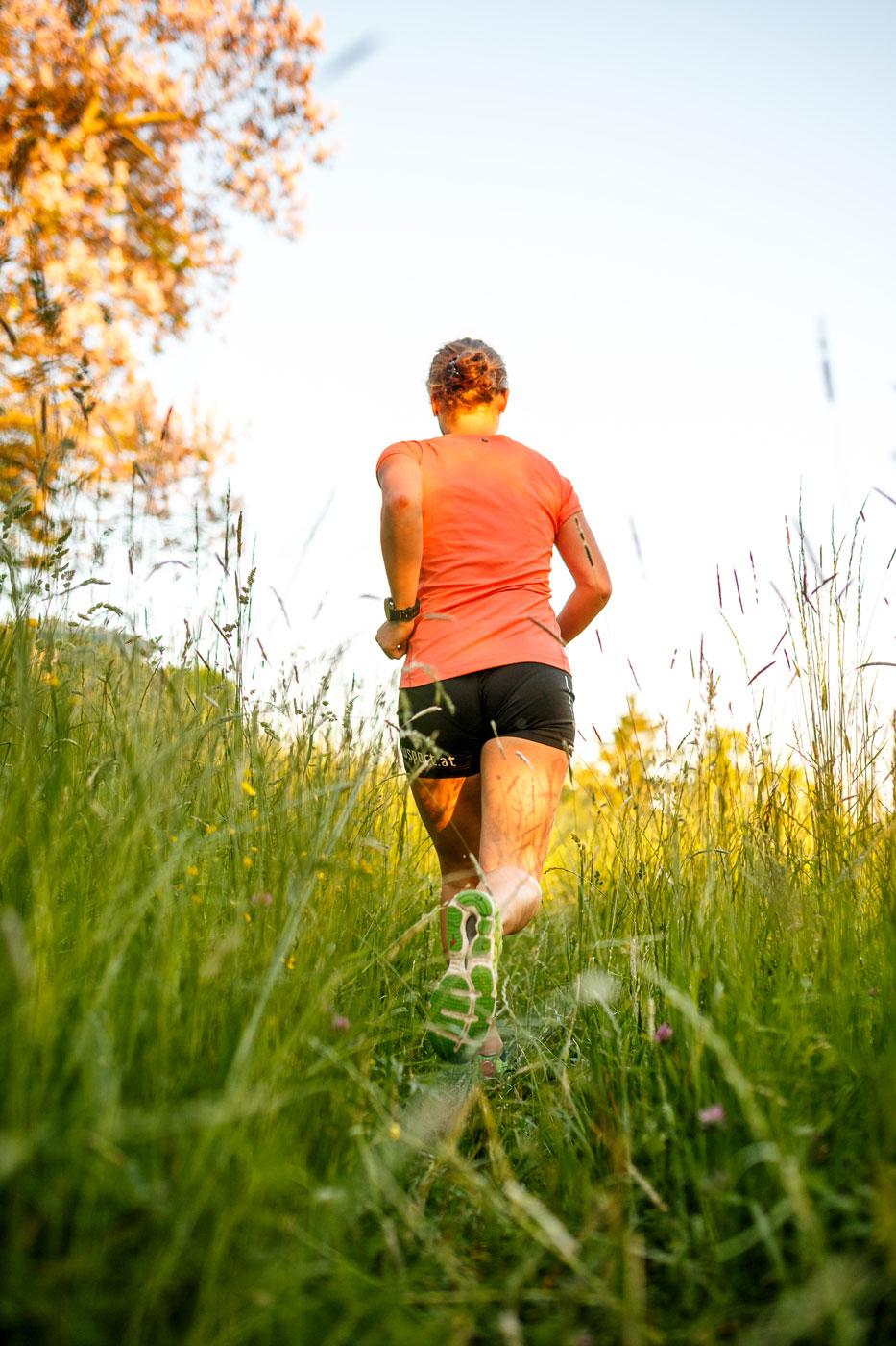 Lauf im hohen Gras