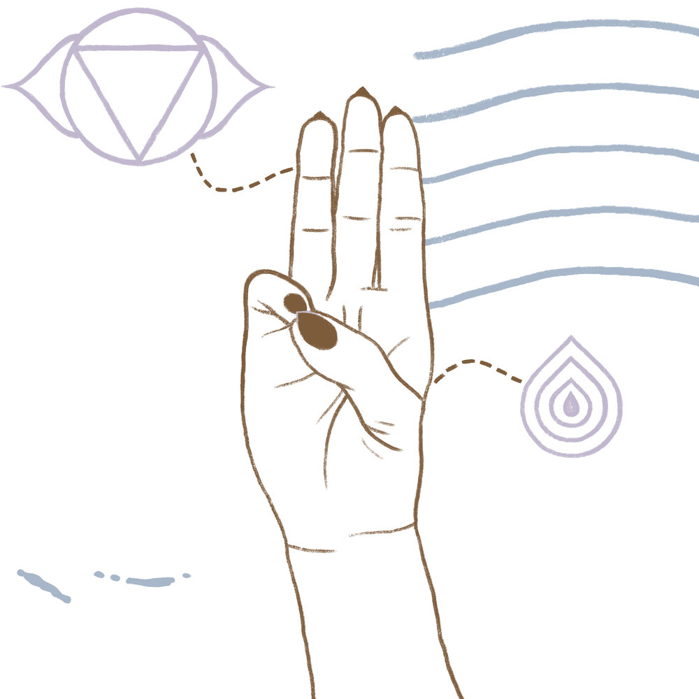 "The term comes from the Sanskrit, buddhi, meaning ""intellect"" or ""perception,"" and mudra, meaning ""gesture"" or ""seal."" -"