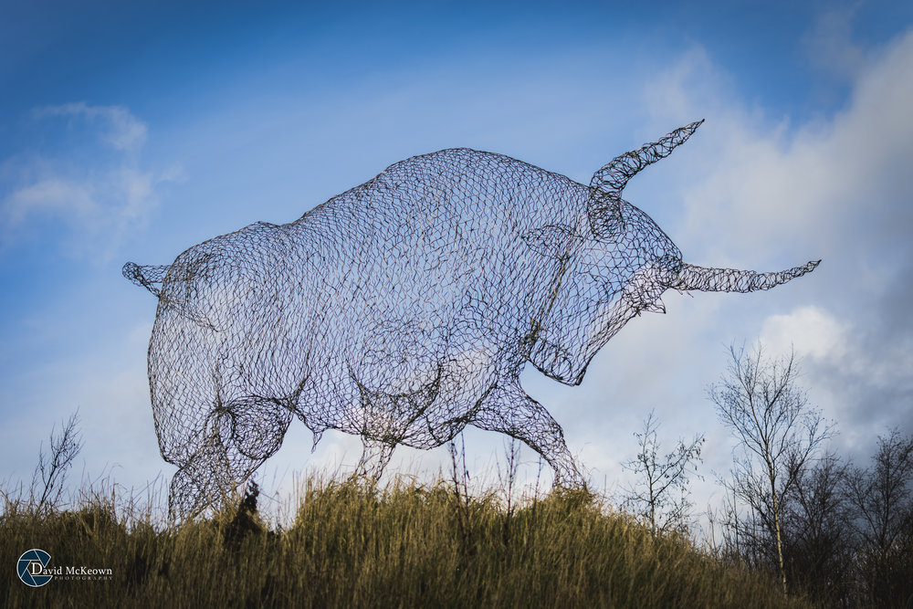 Brown Bull Wire Sculpture.jpg