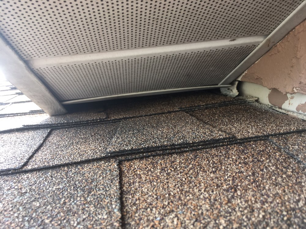 Rodents can squeeze through small roof openings