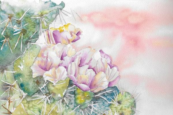 Cactus Blooming, by Debbie Walker