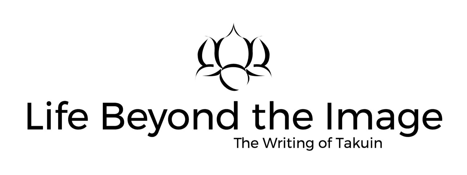 Life Beyond the Image