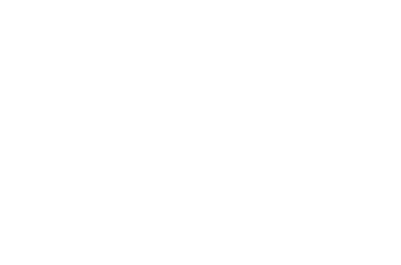 PMD Productions LLC