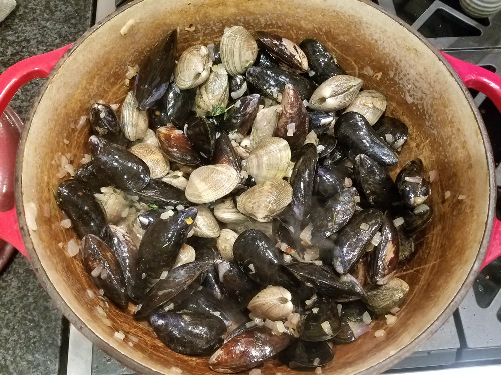 mussels clams