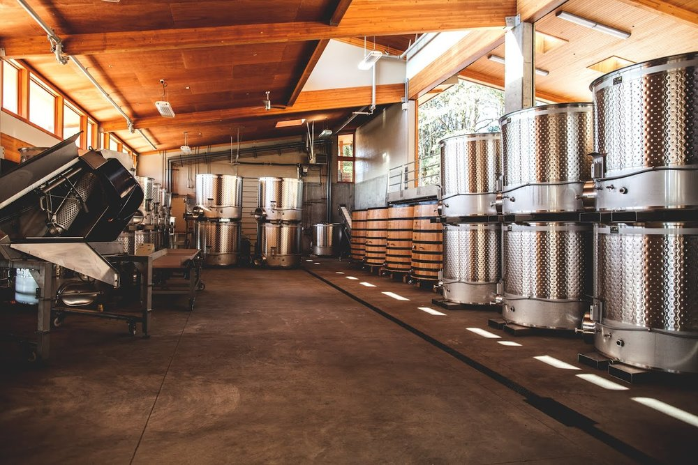 Tesla, winery tours, tasting rooms, wine, willamette valley, portland, lake oswego, private, tours