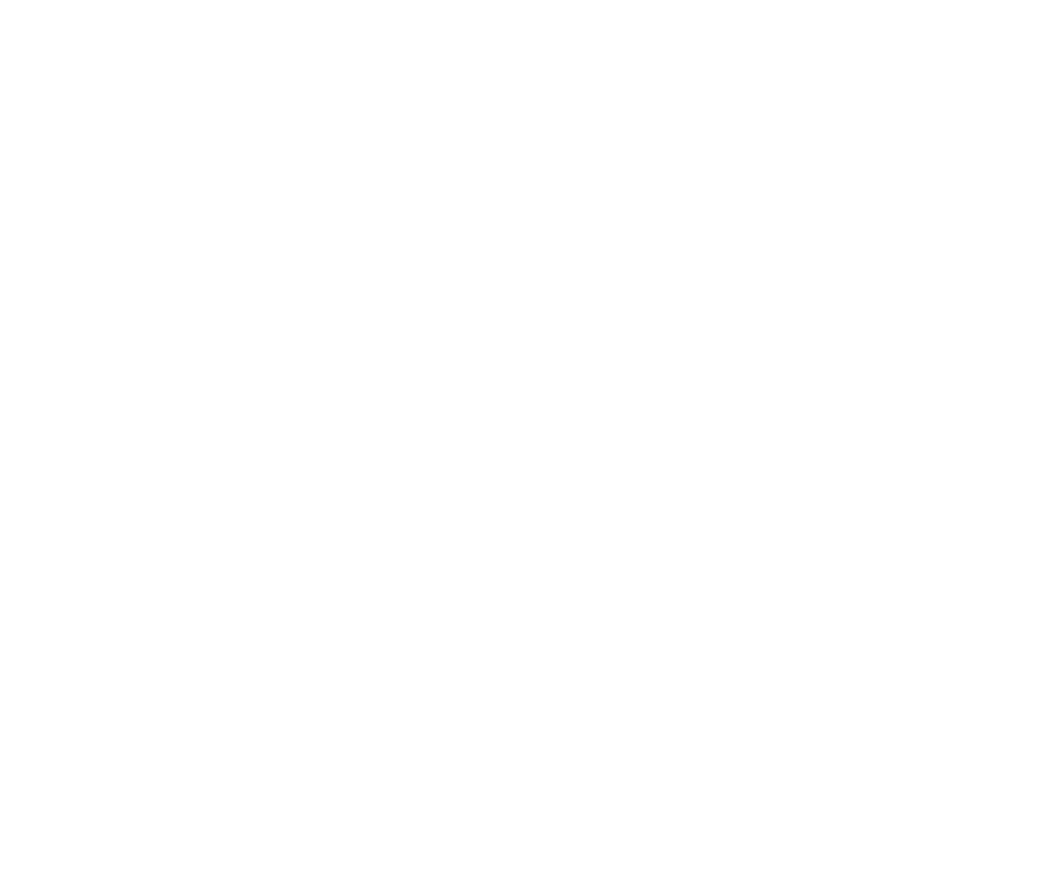 The Van Lifers