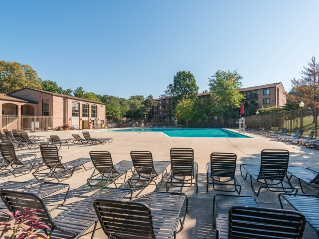 avant-annandale-va-resort-style-swimming-pool.jpg
