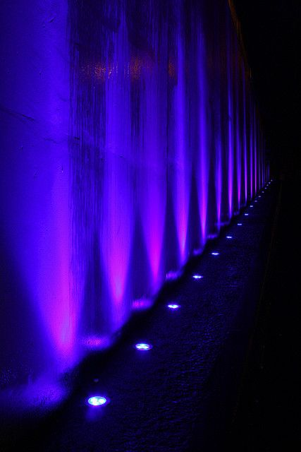 purple uplighting.jpg