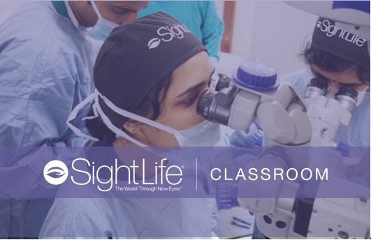 SightReady Classroom Photo Block.JPG