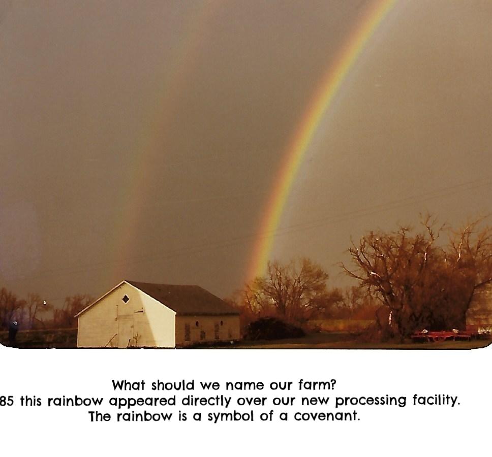 Rainbowwhite.jpg