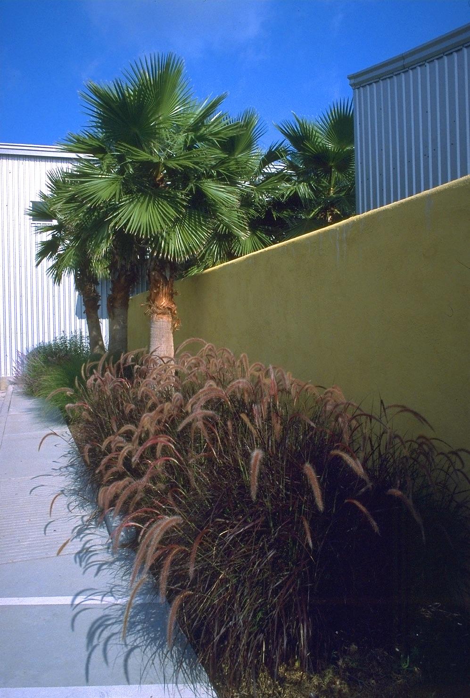 SMITH-entry wall w: landscape 2.jpg