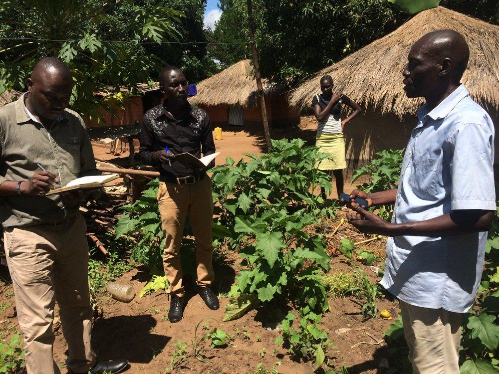 farmer explaining eggplant rot.JPG