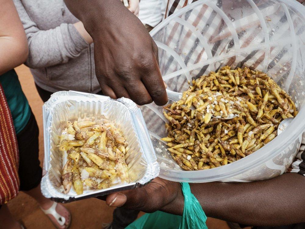 nsenene uganda street seller.jpg