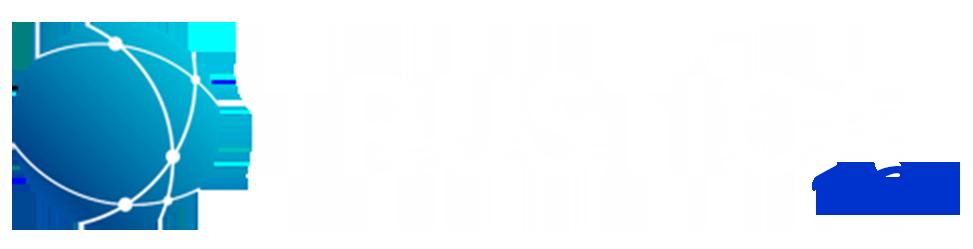 Trustica-V2X-Logo.png