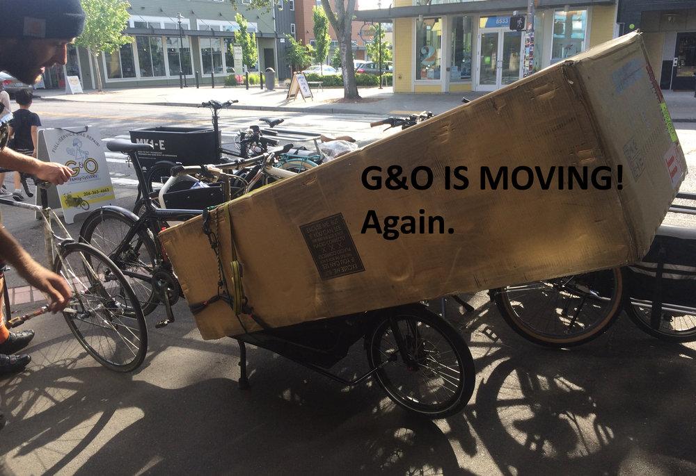 MOVING-IMAGE.jpg