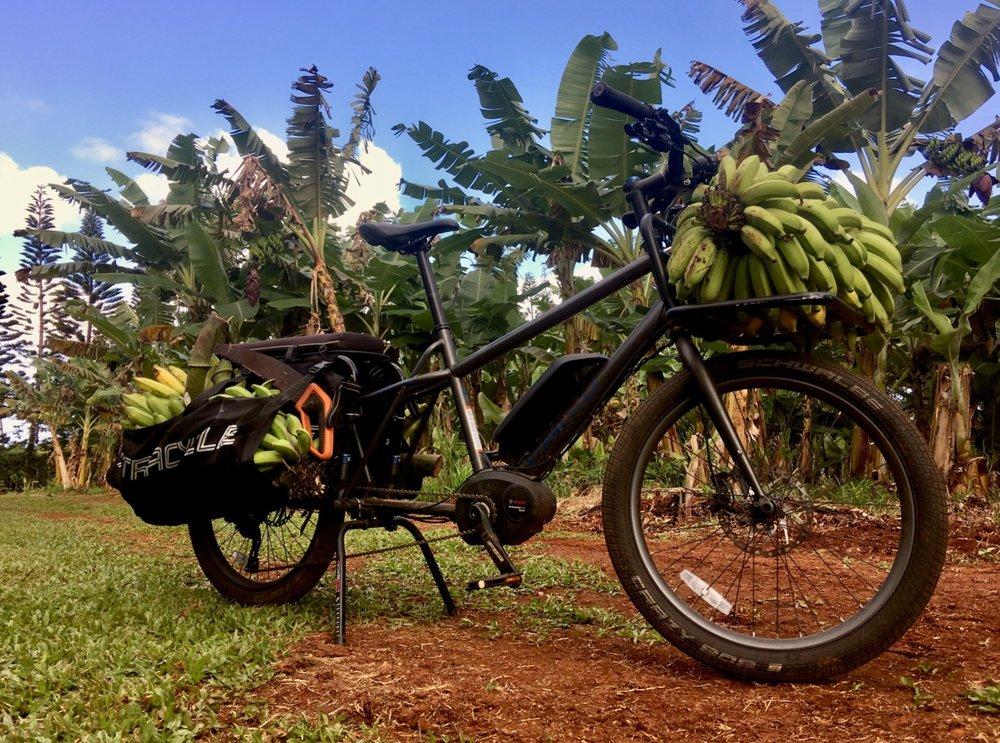 xtracycle-electric-stoker-cargo-bike-seattle