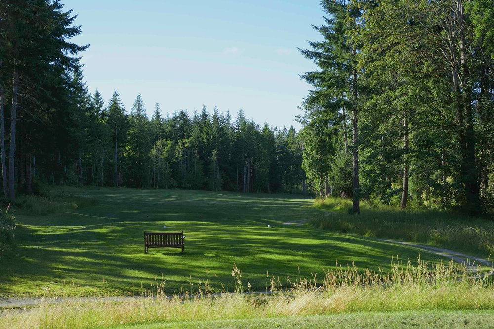 QuadraGolf_Hole2_teebox_DSC00318.jpg