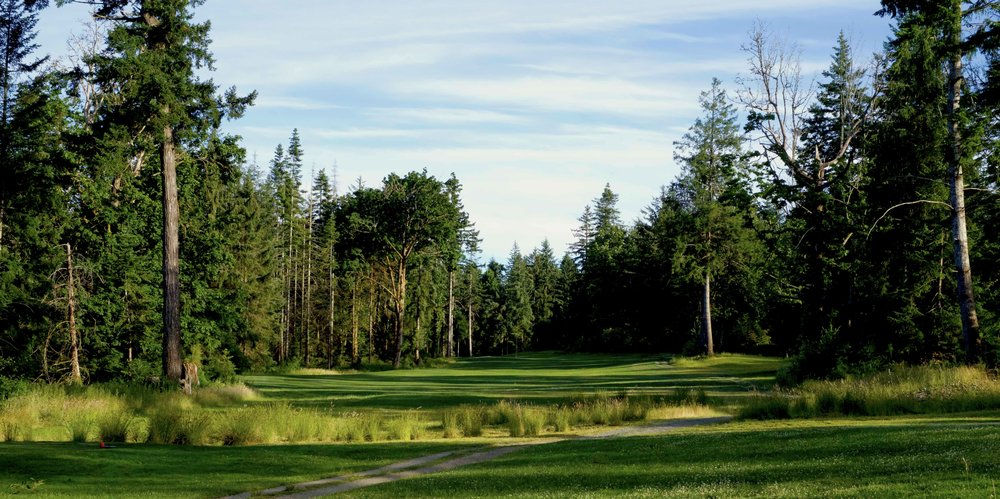 QuadraGolf_Hole3_teebox_DSC00334.jpg