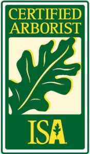 The International Association of Arboriculture certifies arborists worldwide.