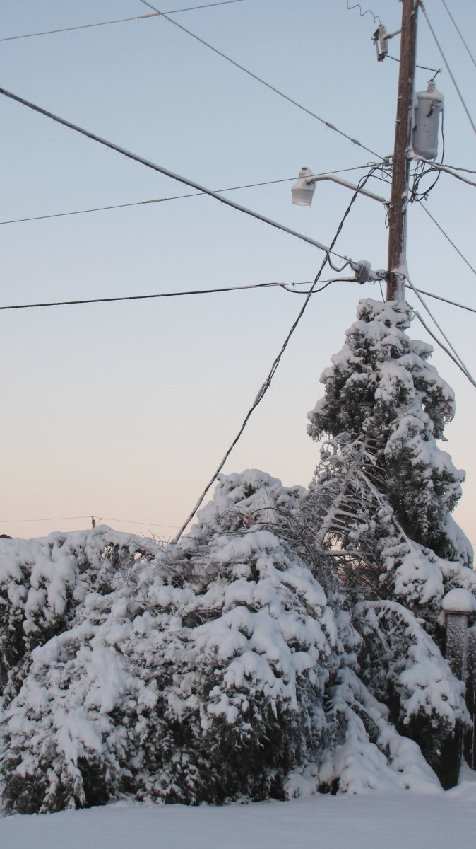 If you see a downed wire, always assume it is energized, and avoid touching anything near the area.