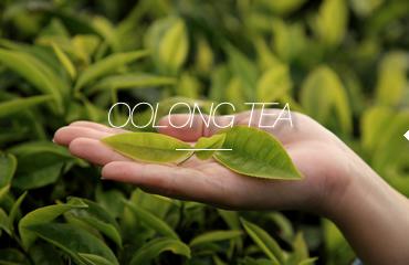 OoLong Tea.jpg