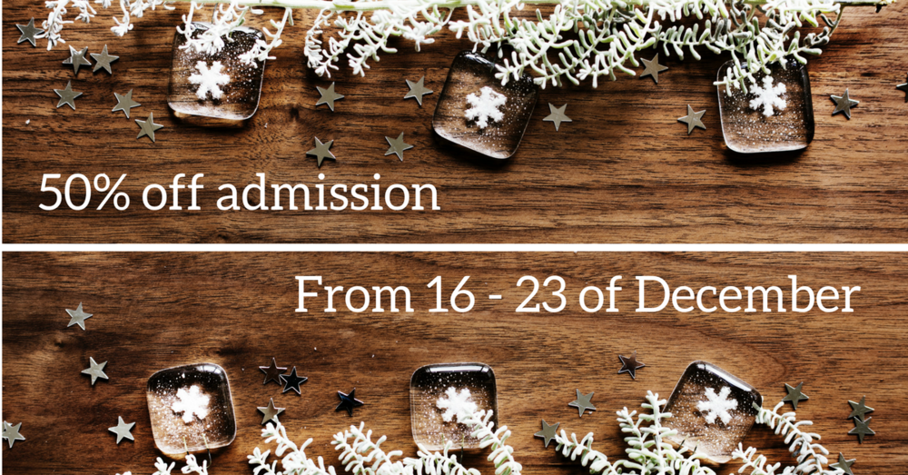 - From 16-23 of December we are creating our own holiday decorations. If you participate in our holiday activity you will receive 50% off admissions tickets.