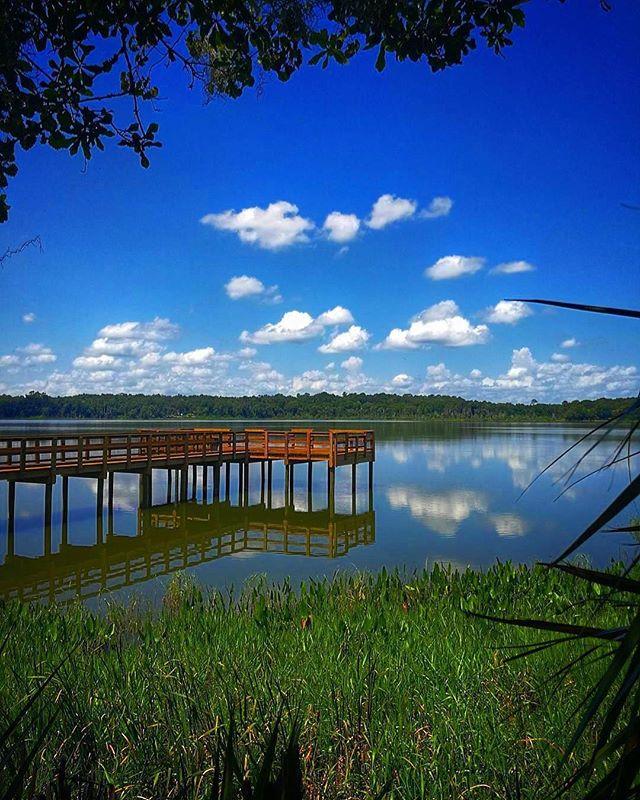 Sunday Funday ☁️🌞💚 __________ 📸: @b4uwie • •  #BestOfGainesville #lachuatrail #reflections #lake  #gainesville #gainesvillefl #paynesprairie #prairie #bluesky #lovefl #sunshinestate #uf #itsgreatuf #gogators #gatornation #florida #floridagators #natgeo #natgeoyourshot #floridalife #visitflorida #naturephotography #whyilovegnv #uf17 #uf21 #daytrip #naturetrip #explorida #explore #adventure @lookgainesville @instachambergnv
