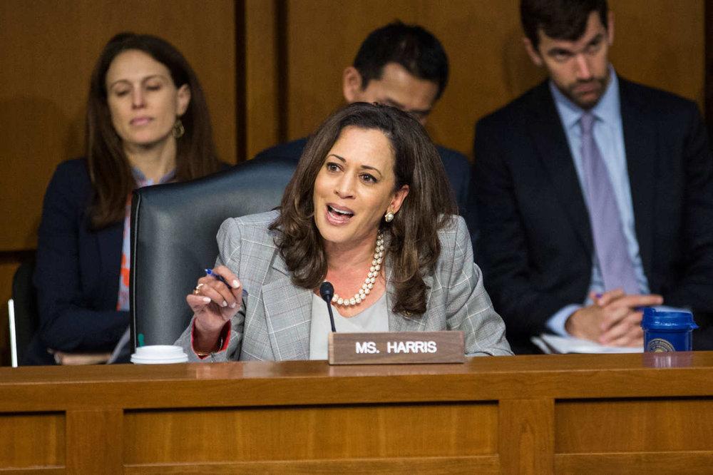 Kamala Harris, photo via  NYMag.com