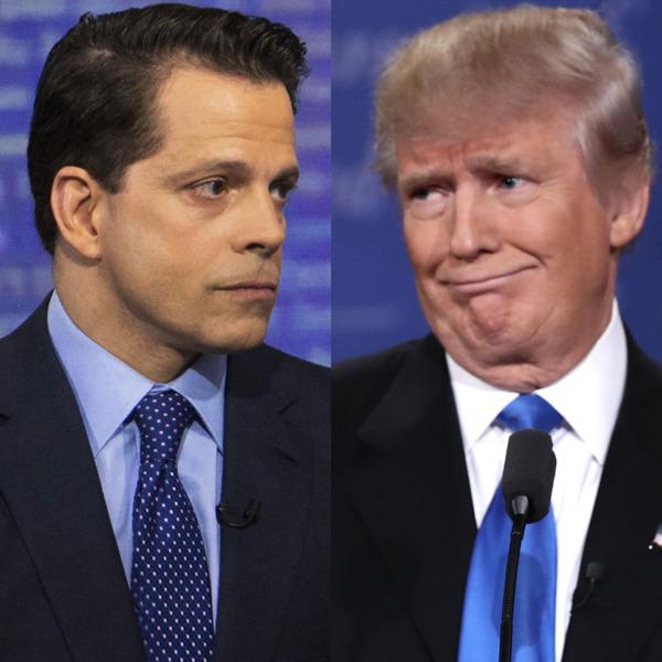 Scaramucci and Trump, photo via  NY Mag