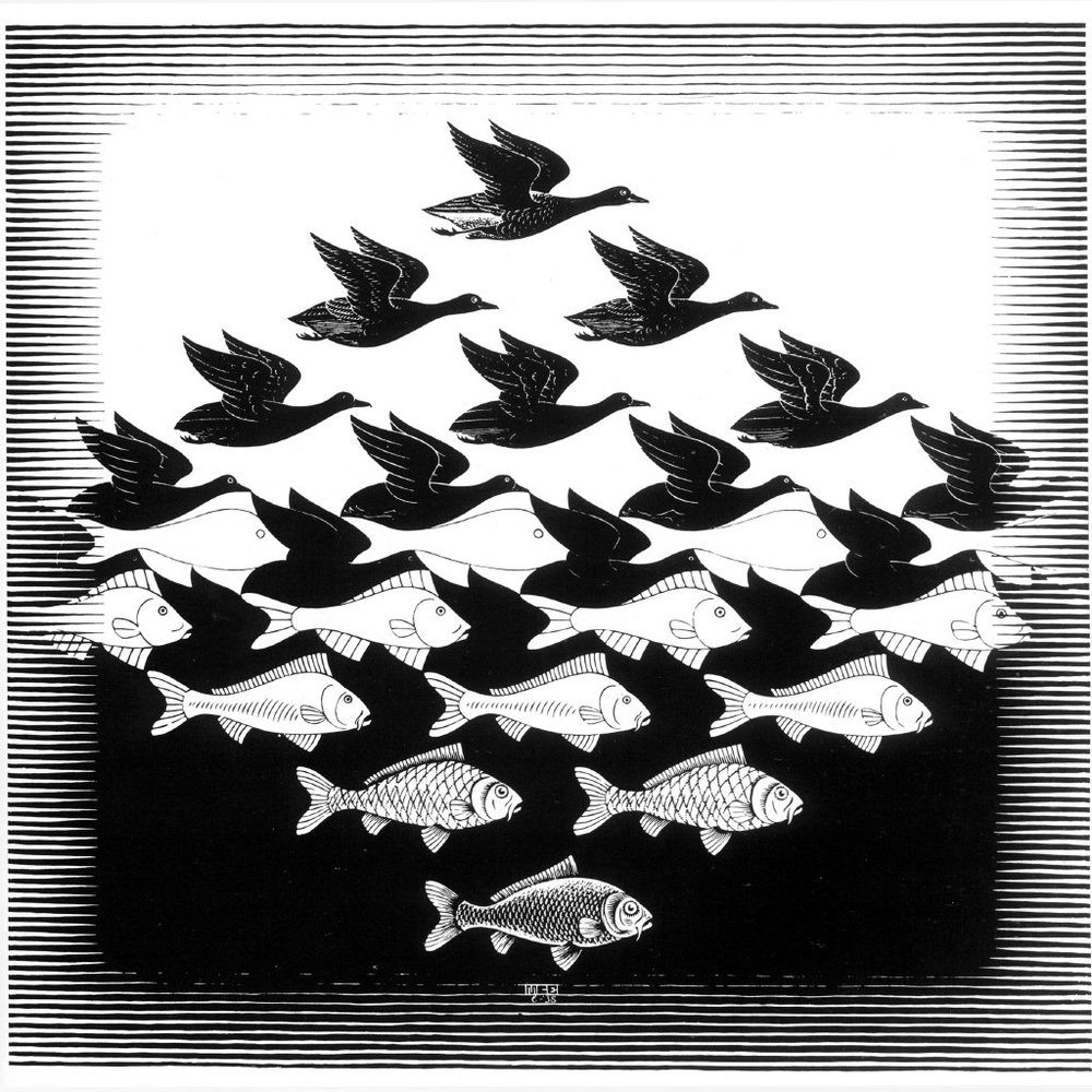 History of Illusion & MC Escher